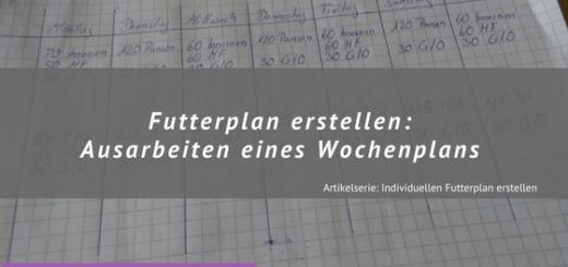 Futterplan Erstellen - Ausarbeitung Wochenplan