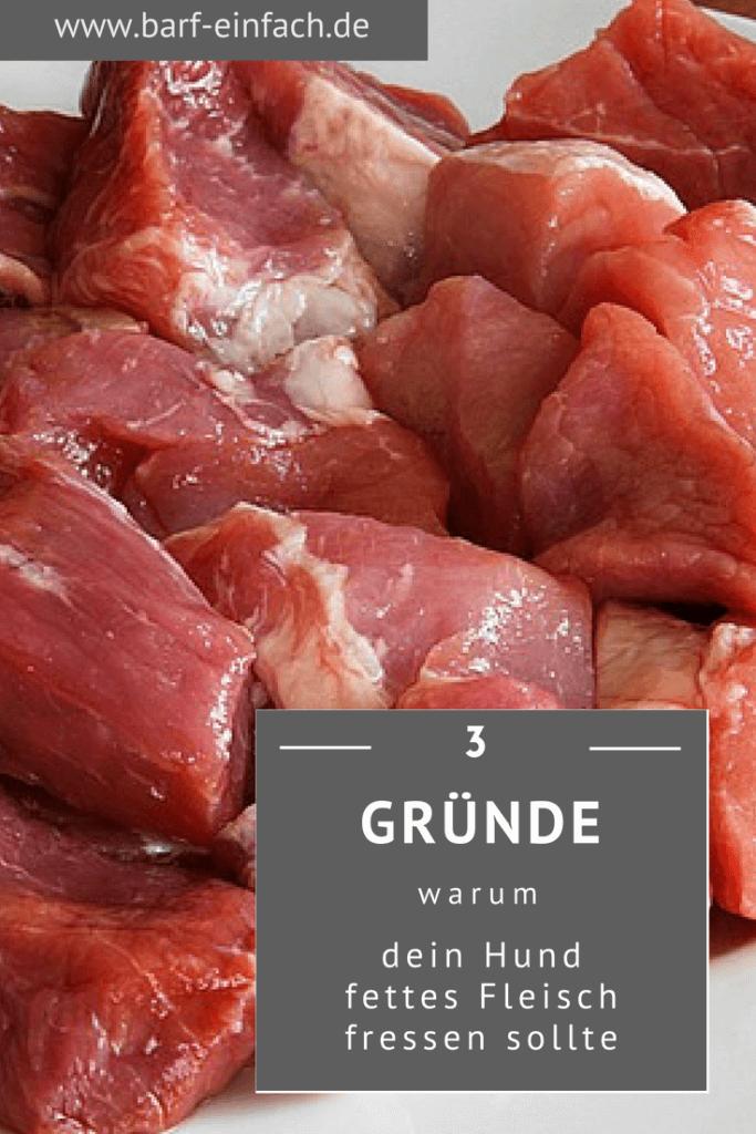 3 Gründe weshalb dein Hund fettes Fleisch fressen sollte, Fleisch