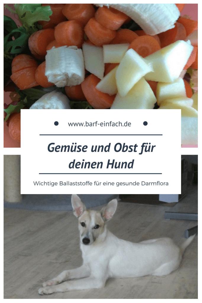 Gemüse, Obst, Hund, Text: Gemüse und Obst für deinen Hund, wichtige Ballaststoffe für eine gesunde Darmflora
