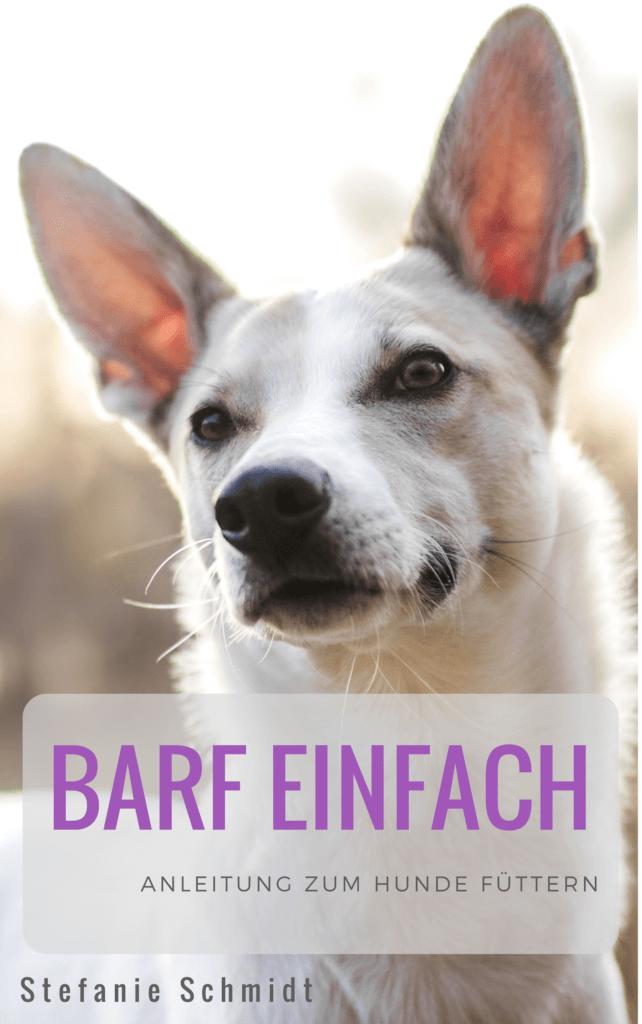 Buch Cover, Hund