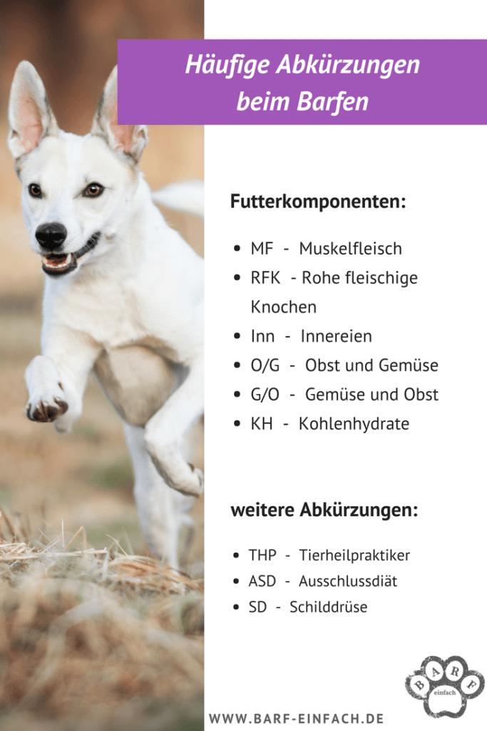 Übersicht häufige Abkürzungen beim Barfen, rennender Hund
