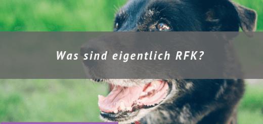Titelbild: Alter Hund, Was sind eigentlich RFK?