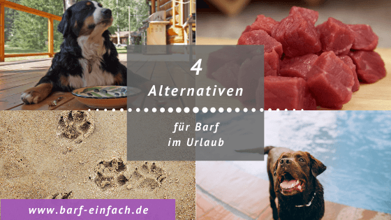 Titelbild Text 4 Alternativen für Barf im Urlaub, Hunde
