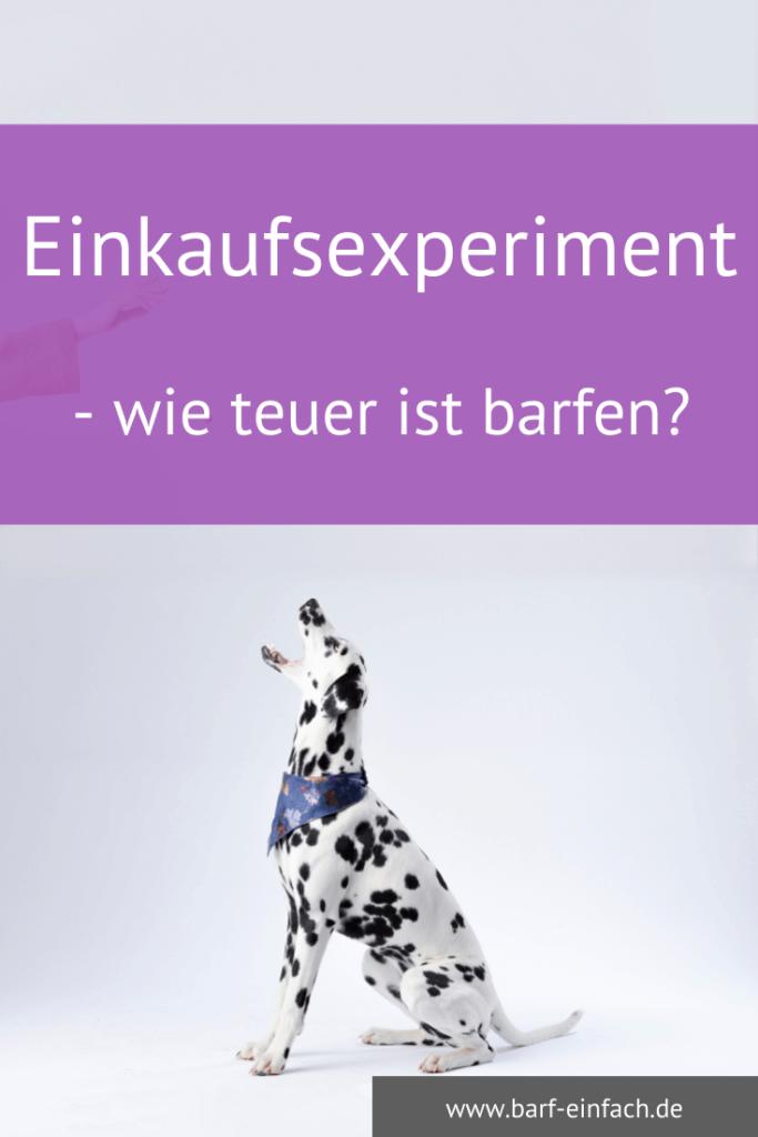 Dalamatiner mit erhobenem Blick - Text: Einkaufsexperiment - wie teuer ist barfen