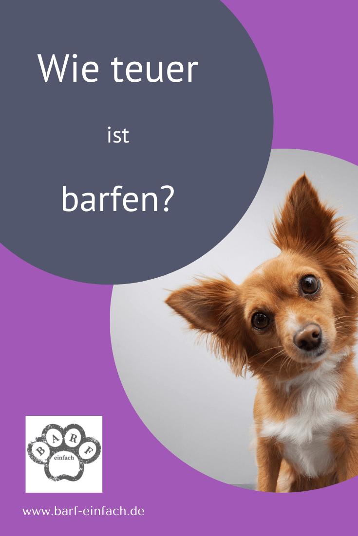 geneigter Hundekopf Text: Wie teuer ist barfen?